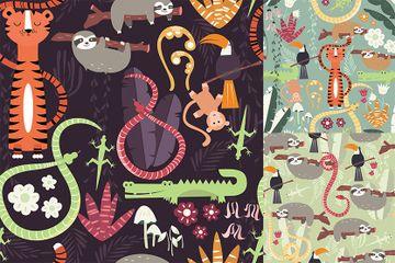 Rainforest Animals Illustration Pack