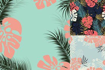 Tropical Designs Illustration Pack