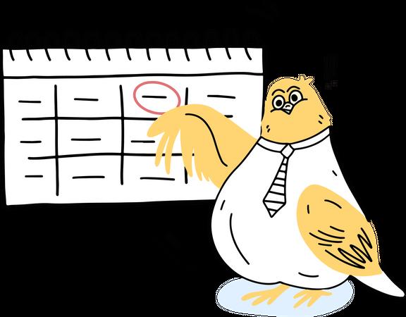 Financial year Illustration