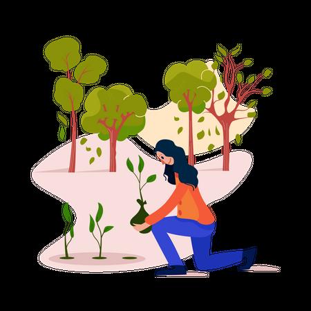 Plant a tree Illustration
