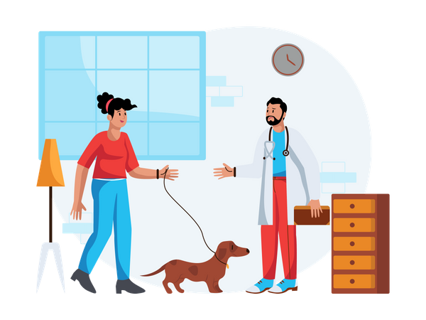 Routine checkup for pet Illustration