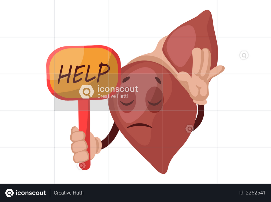 Help liver Illustration
