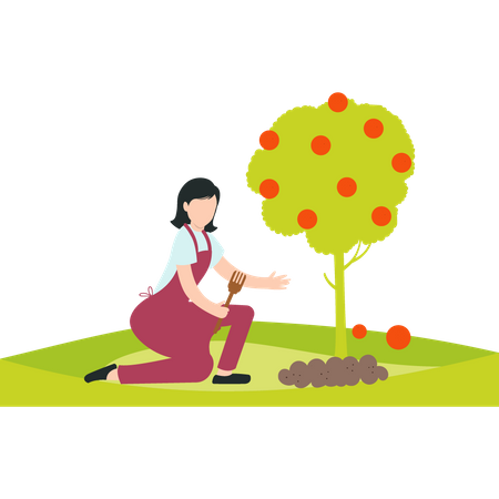 A girl digging a plant in a garden or a farm near a fruit tree Illustration