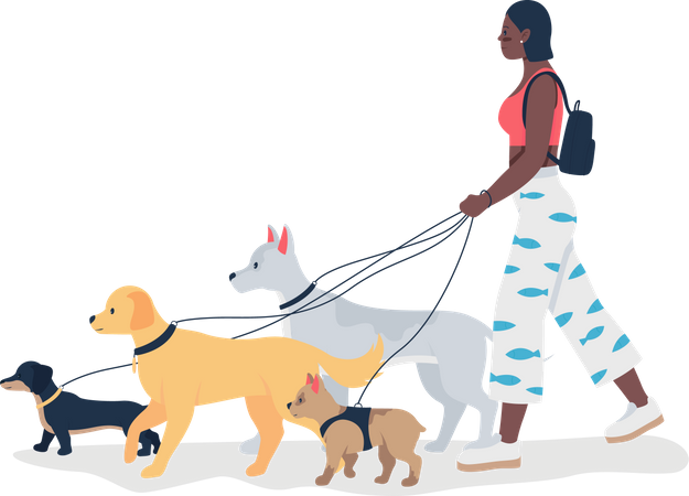 African American girl walking dogs on leashes Illustration
