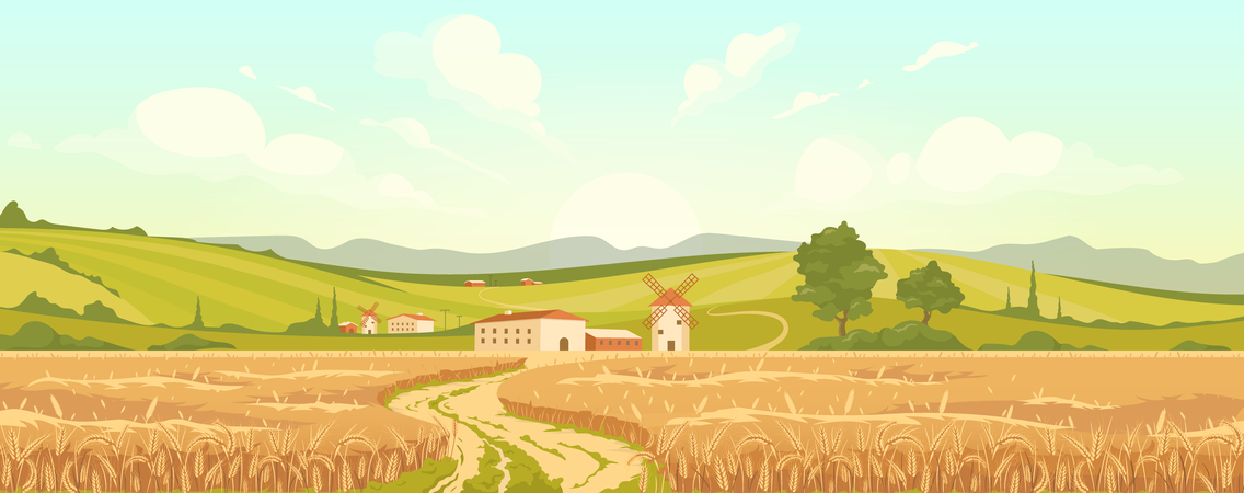 Agricultural field Illustration