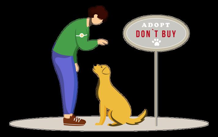 Animal adoption Illustration