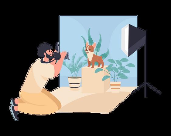 Animal Photography Illustration