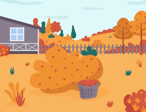 Autumn garden Illustration