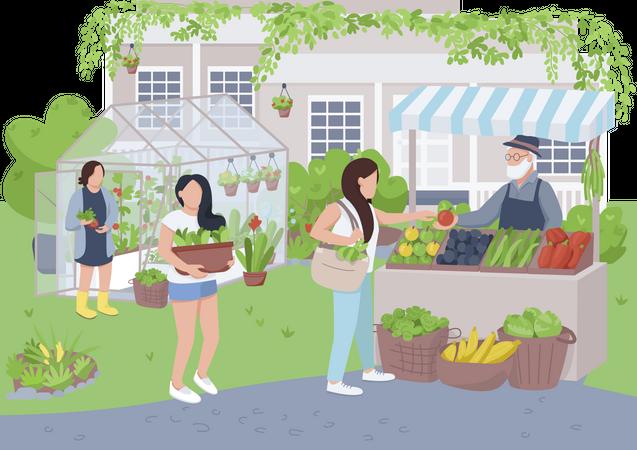 Backyard farming Illustration