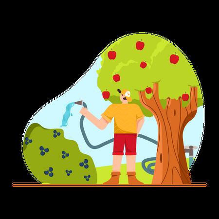 Boy watering plant Illustration