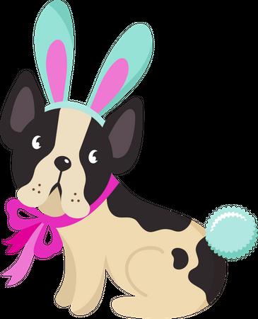 Bunny dog Illustration