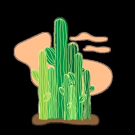 Cactus on sahara desert Illustration