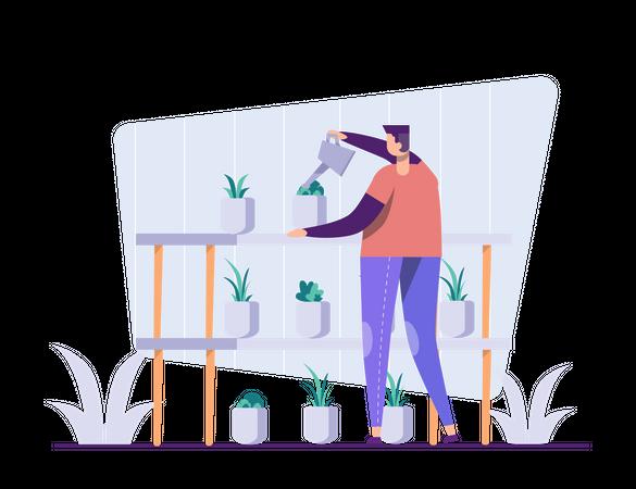 Caring for plants Illustration