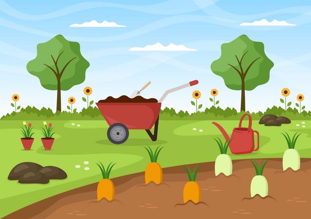 Carrot Farming Illustration