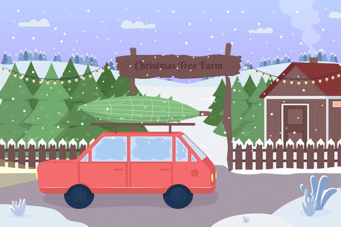 Christmas tree farm Illustration