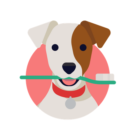 Closeup of Jack russell Dog Holding toothbrush in mouth Illustration