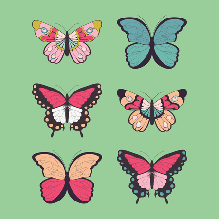 Collection of six hand drawn colorful butterflies Illustration