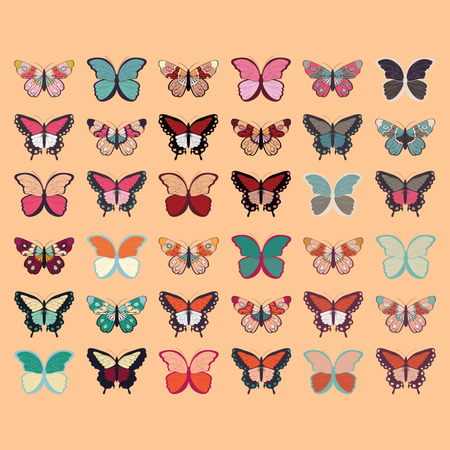 Collection of thirty six colorful hand drawn butterflies, orange background Illustration