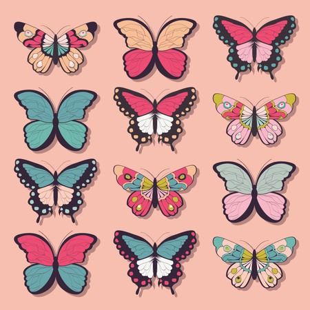 Collection of twelve colorful hand drawn butterflies, pink background Illustration