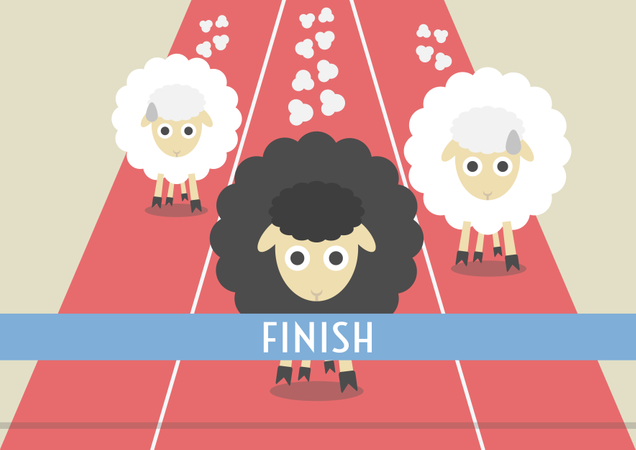 Competition Of Sheep Illustration