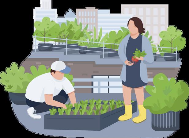 Couple doing terrace farming Illustration