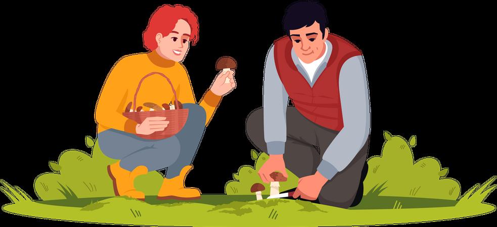 Couple Picking Mushrooms Illustration