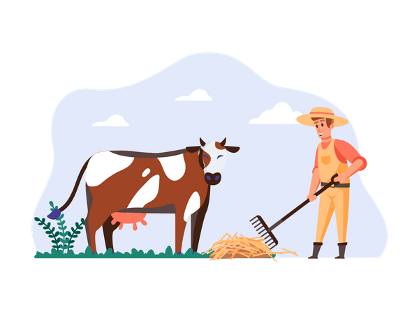 Cowman giving food to cow Illustration