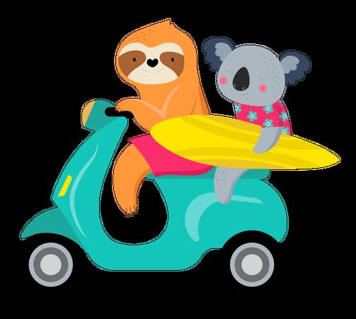 Cute characters of koalas and sloths, having fun Illustration