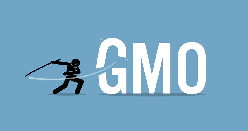 Cutting GMO food for healthy diet. Vector artwork concept of healthy lifestyle, eating organic, and stop eating genetically modified organism food. Illustration