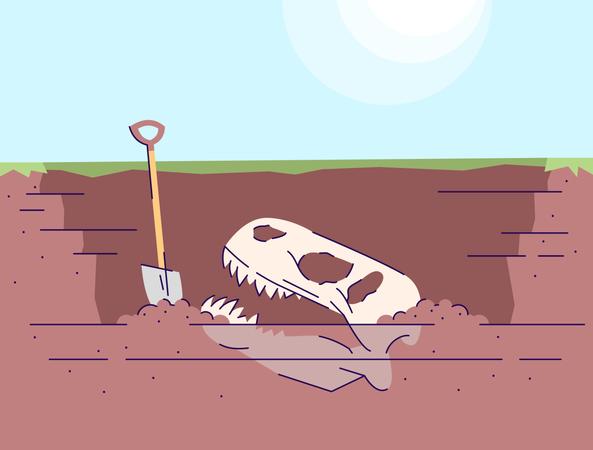 Dinosaur skull excavation Illustration