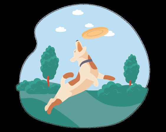 Dog catching disc in garden Illustration