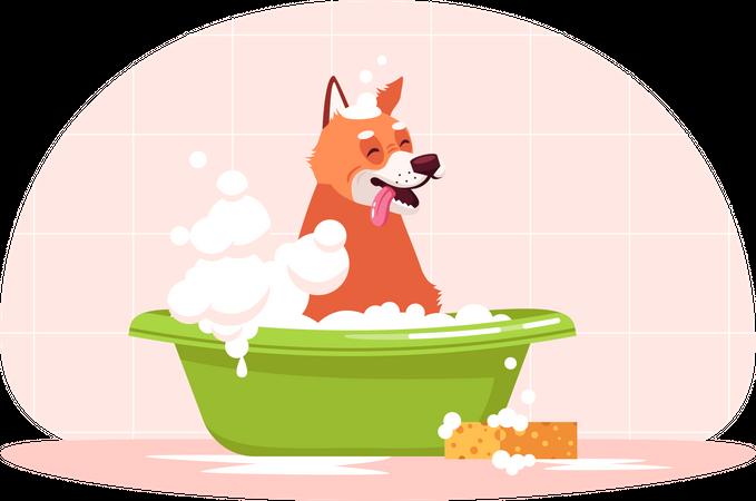 Dog in bath Illustration