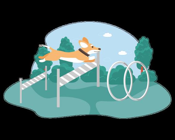 Dog jumping hurdles in tract Illustration