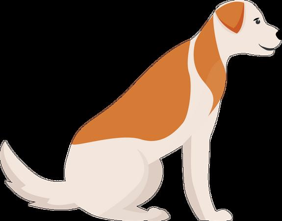 Dog with ginger spots Illustration