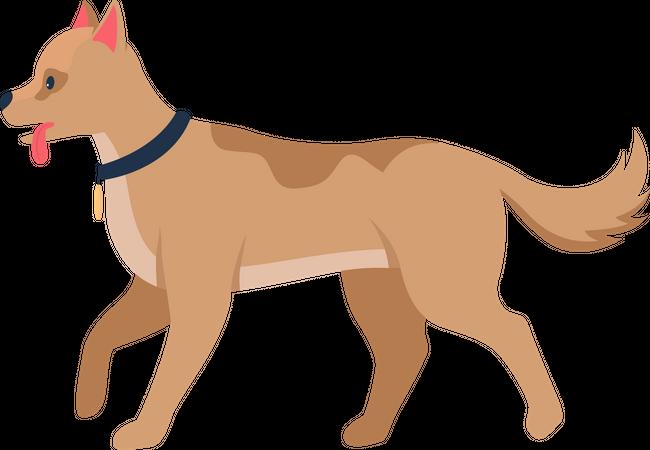 Doggy Illustration