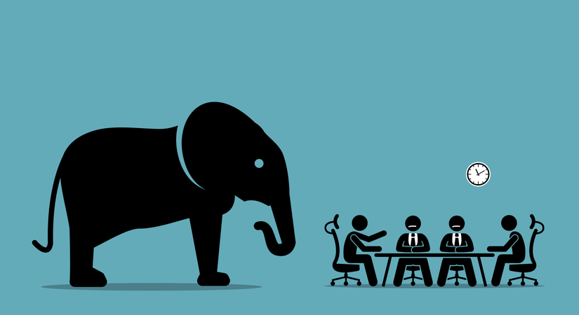Elephant in the room Illustration