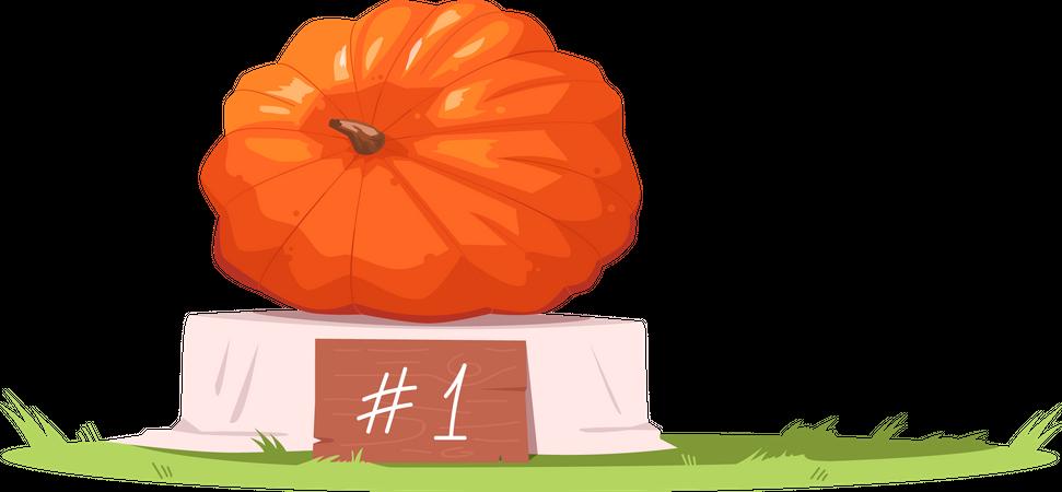Elk Grove Giant Pumpkin Festival Illustration