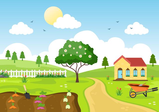 Farm Area Illustration