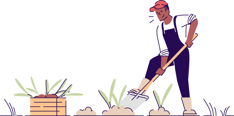 Farmer digging up crop Illustration
