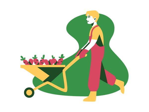 Farmer with carrot trolley Illustration