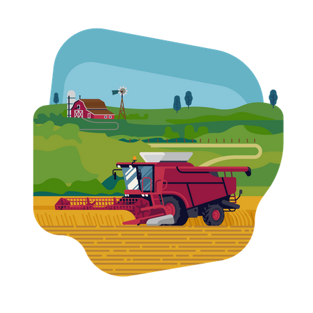 Farming and agriculture with combine harvester harvesting grain crops Illustration