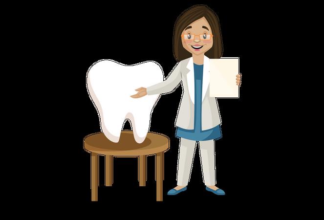 Female dentist analyzing teeth Illustration