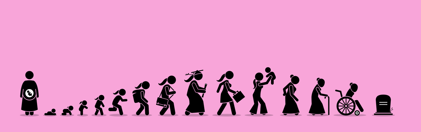 Female life cycle and aging process Illustration