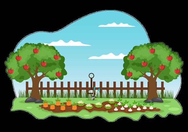 Fruit Farm Illustration