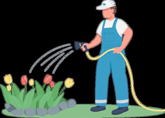 Gardener watering flowerbed Illustration