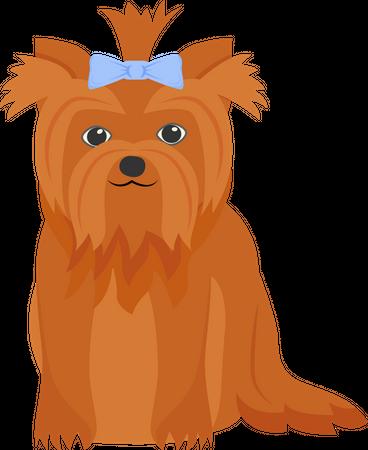 Ginger terrier Illustration