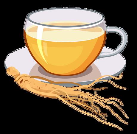 Ginseng tea Illustration