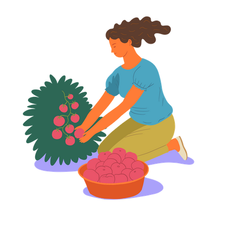 Girl collecting berries Illustration