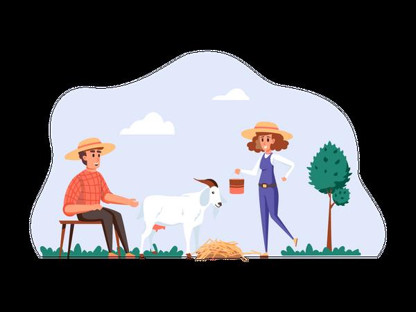 Goat herder feeding goat Illustration