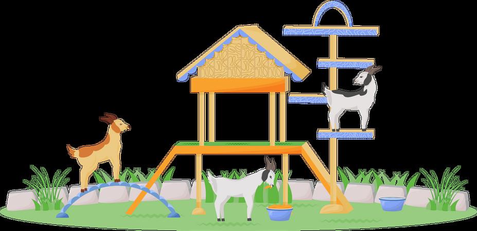 Goat in playhouse Illustration